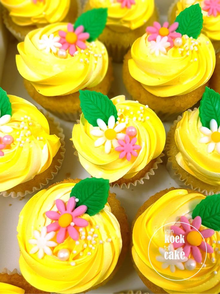 maya-de-bij_kindertaart_verjaardagstaart_cupcakes-cakepops_bestellen_Zeeland-Vlissingen-Middelbrg_van-koek-tot-cake10