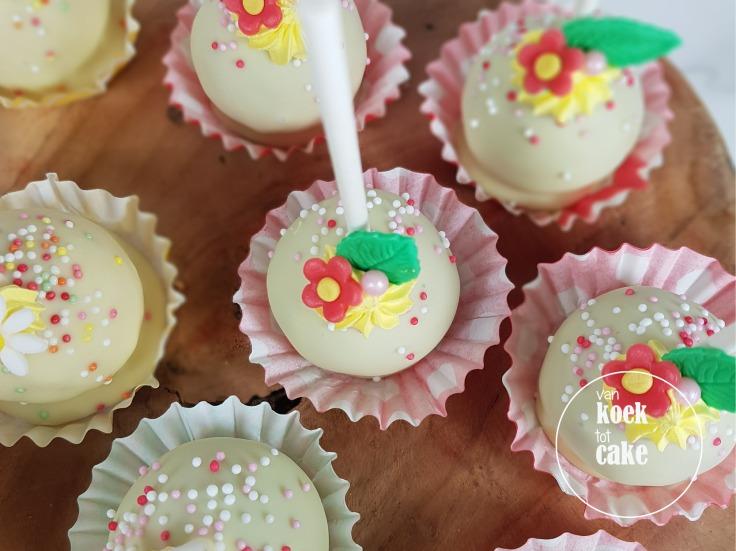 Maya de Bij kindertaart verjaardagstaart cupcakes en cakepops | Bestellen Zeeland Vlissingen Middelburg Oost-Souburg