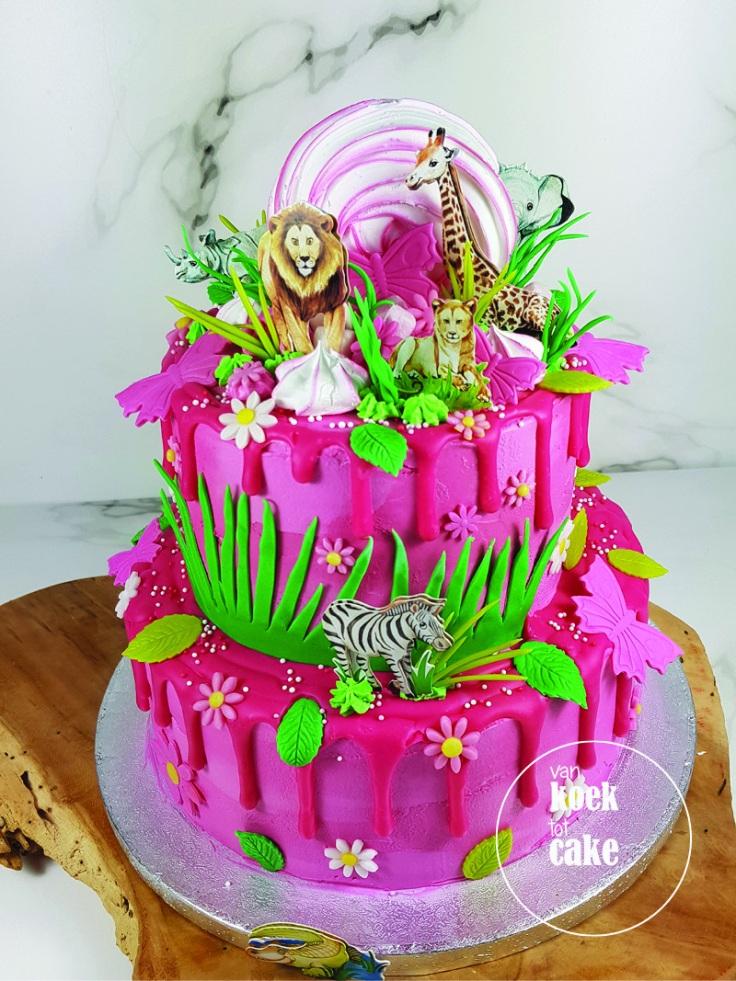 Dierentuintaart roze drip cake verjaardagstaart | Bestellen Zeeland Walcheren Middelburg Vlissingen Oost-Souburg