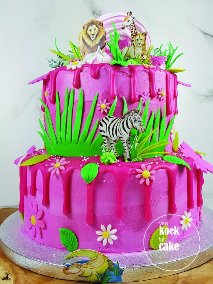 Dierentuintaart roze drip cake verjaardagstaart | Bestellen Zeeland Walcheren Middelburg Vlissingen Oost-SouburgDierentuintaart roze drip cake verjaardagstaart | Bestellen Zeeland Walcheren Middelburg Vlissingen Oost-Souburg