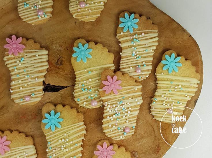 babyshower-gebak-cupcakes-taart-hapjes-koekjes(6)-bestellen-zeeland-middelburg-vlissingen-oost-souburg